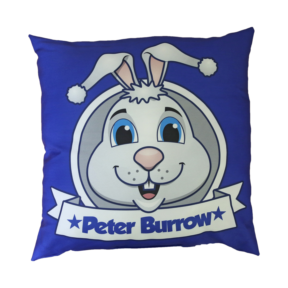 Peter Burrow Cushion