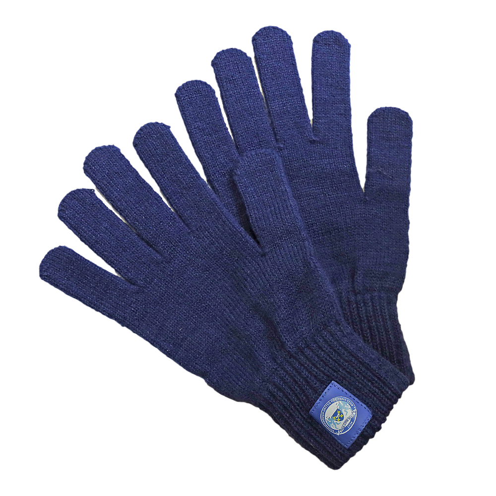 Youth Navy Gloves