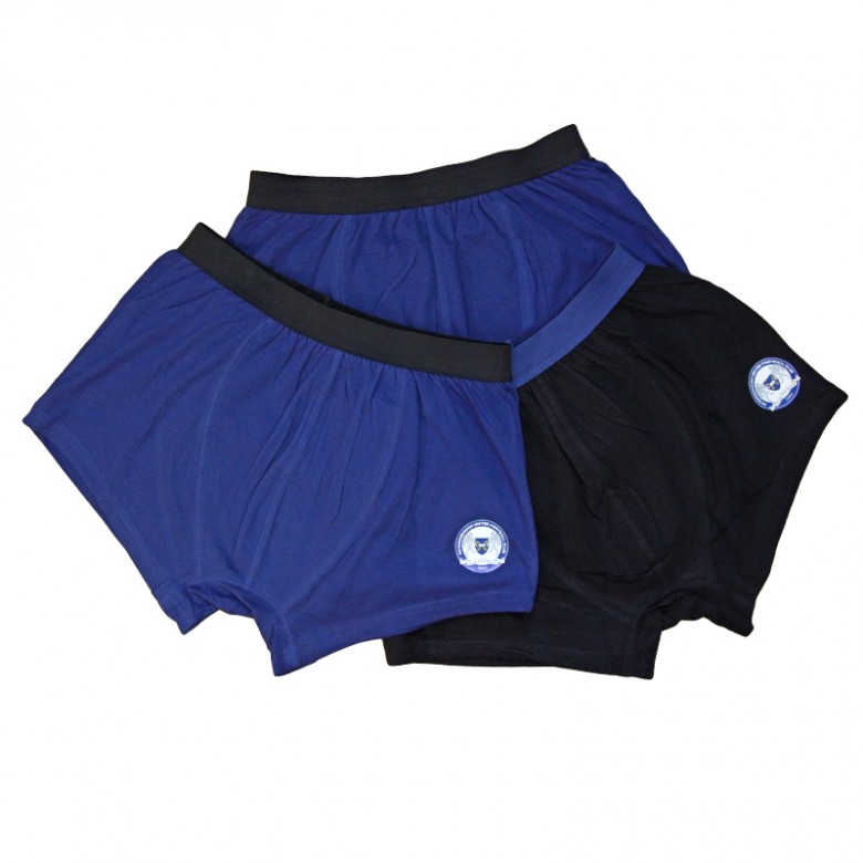 Boys 3 Pack Hipster Trunks